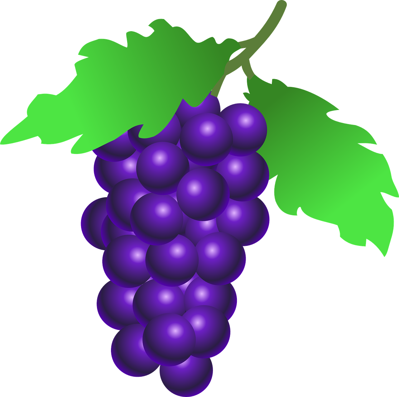 icon grapes red